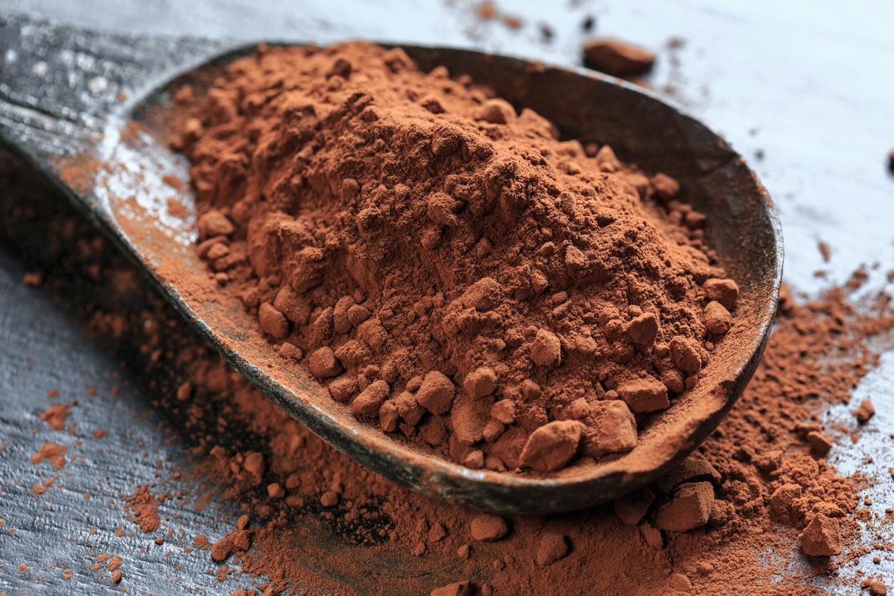 Chocolate Cake Cacao