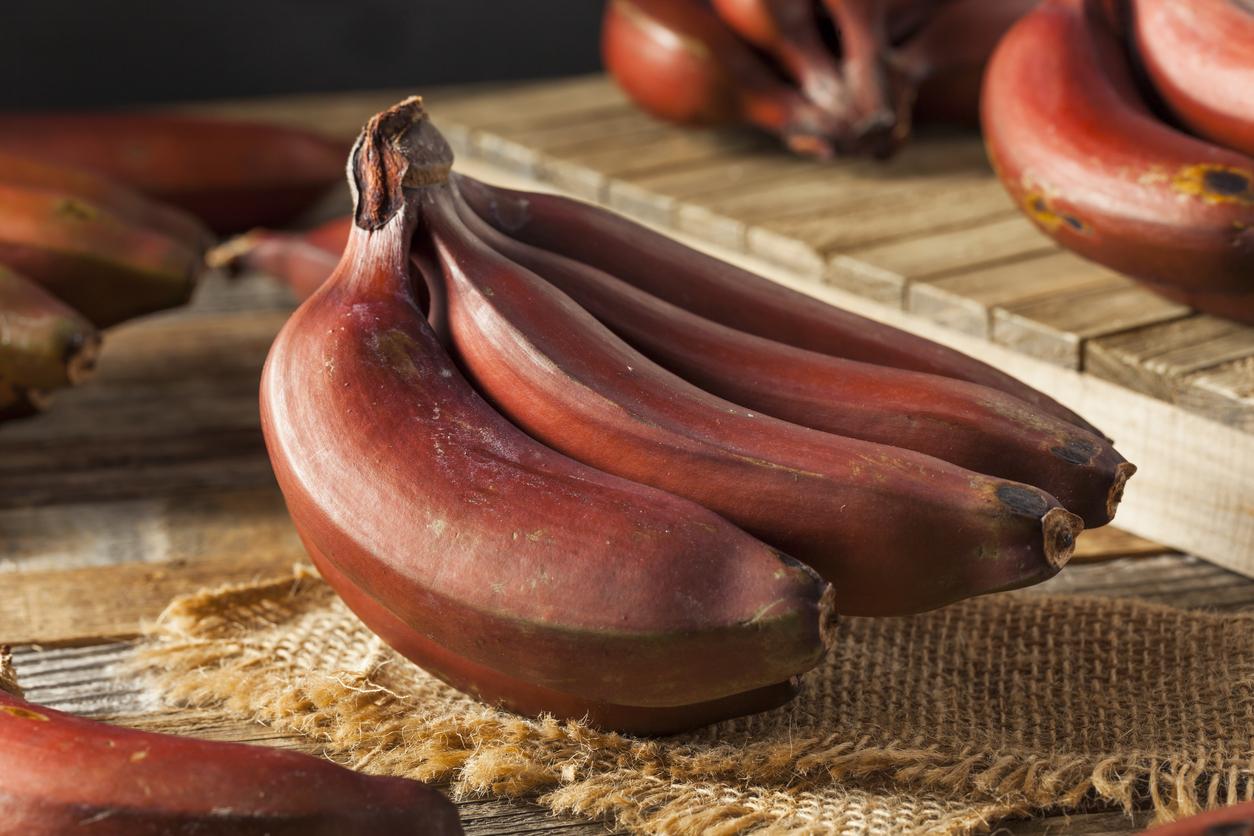beneficios de comer plátano rojo | CocinaDelirante
