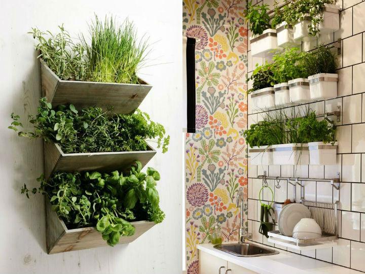 Como hacer un jardin colgante en la cocina - Plantas de interior aromaticas ...
