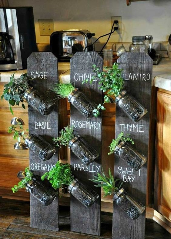 Como hacer un jardin colgante en la cocina for Jardines caseros colgantes
