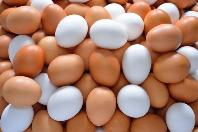 Como saber si un huevo esta echado a perder cocinadelirante for Como saber si un pozo esta legalizado