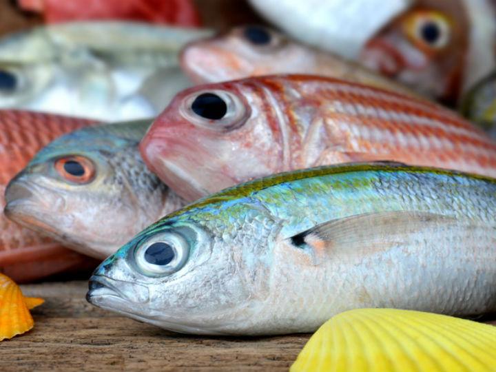 Te atrever as a comer los ojos del pescado for Espejo ojo de pescado