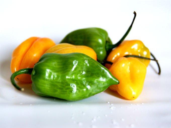 diferencias entre chile habanero y manzano