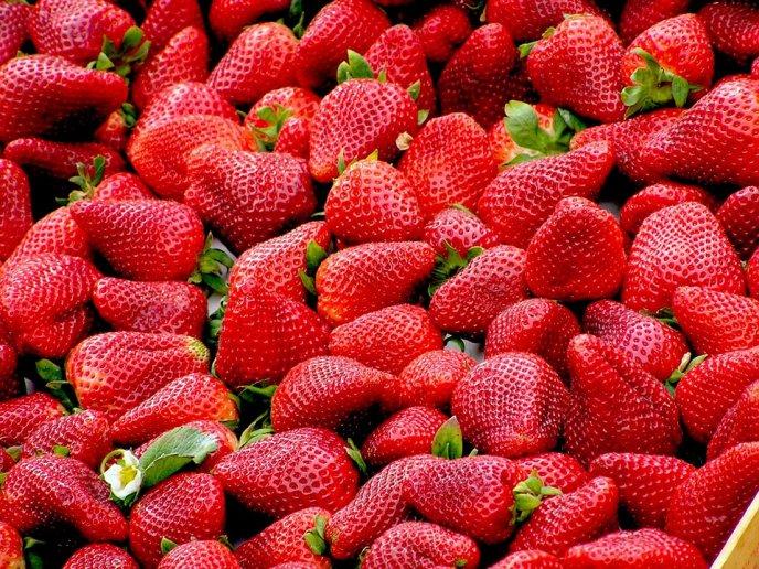 piña colada con fresa natural