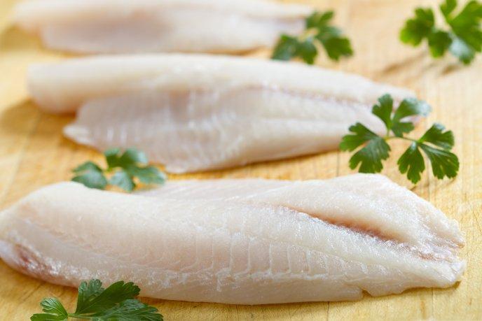 venden pescado falso en México