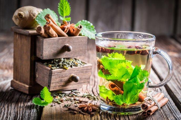 Como tomar el te de cilantro para adelgazar