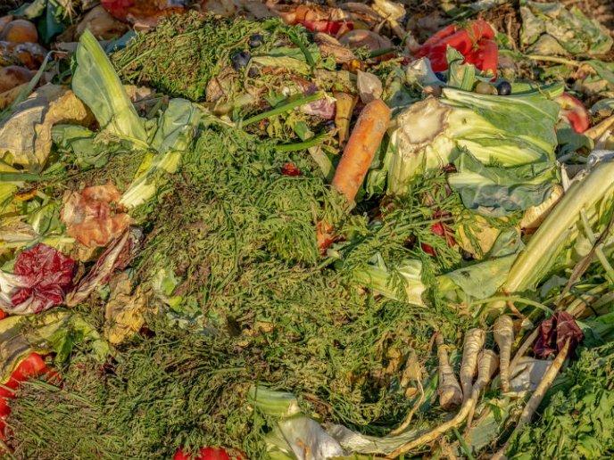10 Restos De Comida Que Sirven Como Abono Natural Para Las Plantas