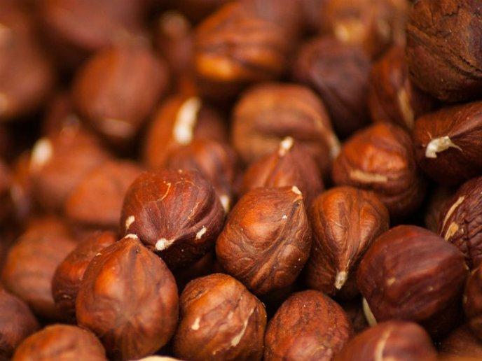 Alimentos prohibidos trigliceridos alto