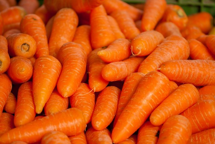 Porque Las Zanahorias Se Ponen Blandas 2zanahorias hasn't joined any groups yet. porque las zanahorias se ponen blandas